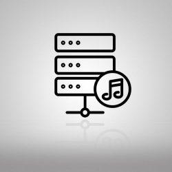 Servidores de audio